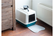 Litter Trays & Accessories