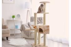 Scratching & Furniture