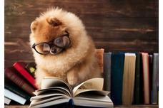 Books, Gifts & Sundry