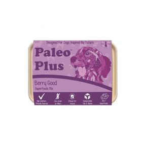 Paleo Plus Berry Good 500g