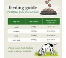 Forthglade Small Dog Grain Free Variety Turkey & Duck 8x150g